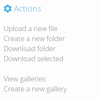 actions-download-selected